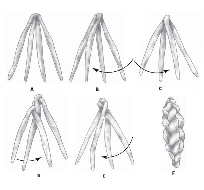 Как правильно связать чеснок в косы для хранения, способы плетения и схемы