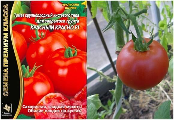 Томат краснобай: характеристика и описание сорта, отзывы, фото, урожайность