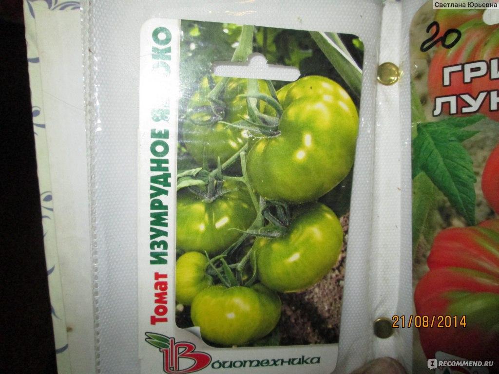 Яблоко-помидор: описание гибрида томата, его достоинства и вкусовые качества