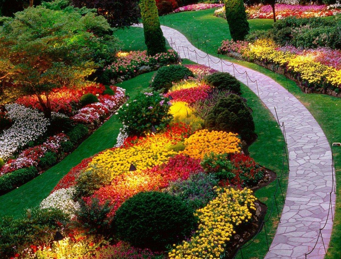 Планирование цветника: секреты сочетания растений и составления композиций. фото