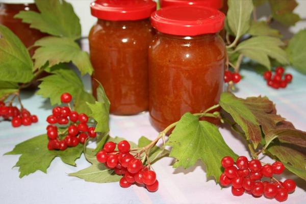 Калина. заготовки на зиму полезные и вкусные