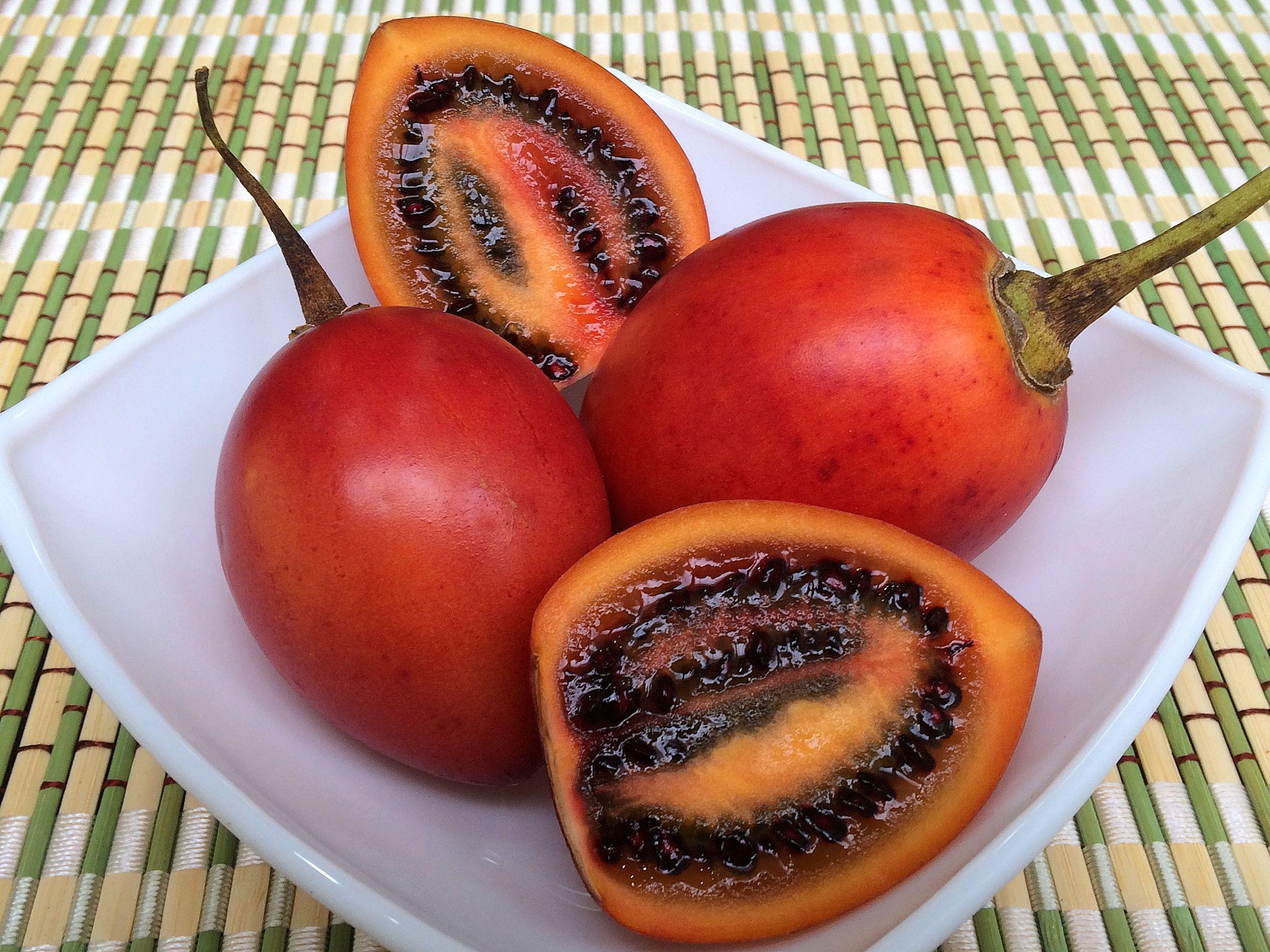 Плоды томатного дерева на вашей кухне