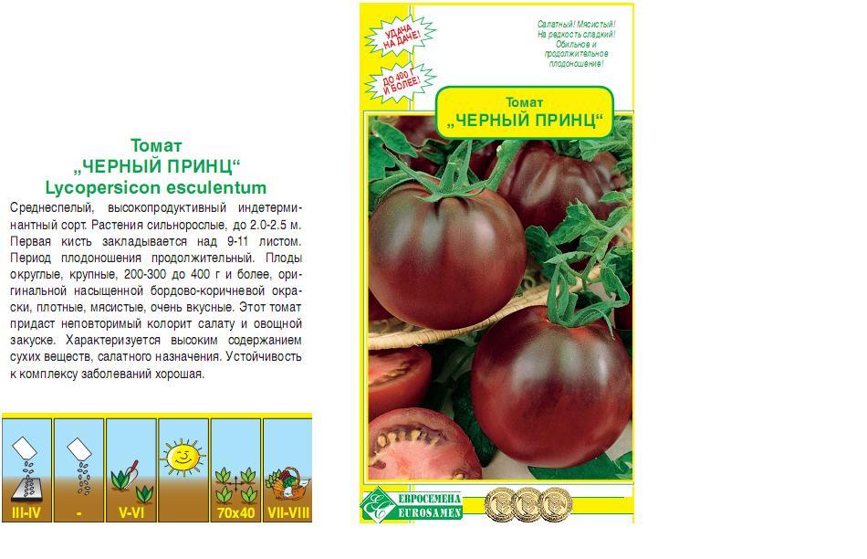 Томат черный принц: правильное выращивание и советы по уходу (115 фото)