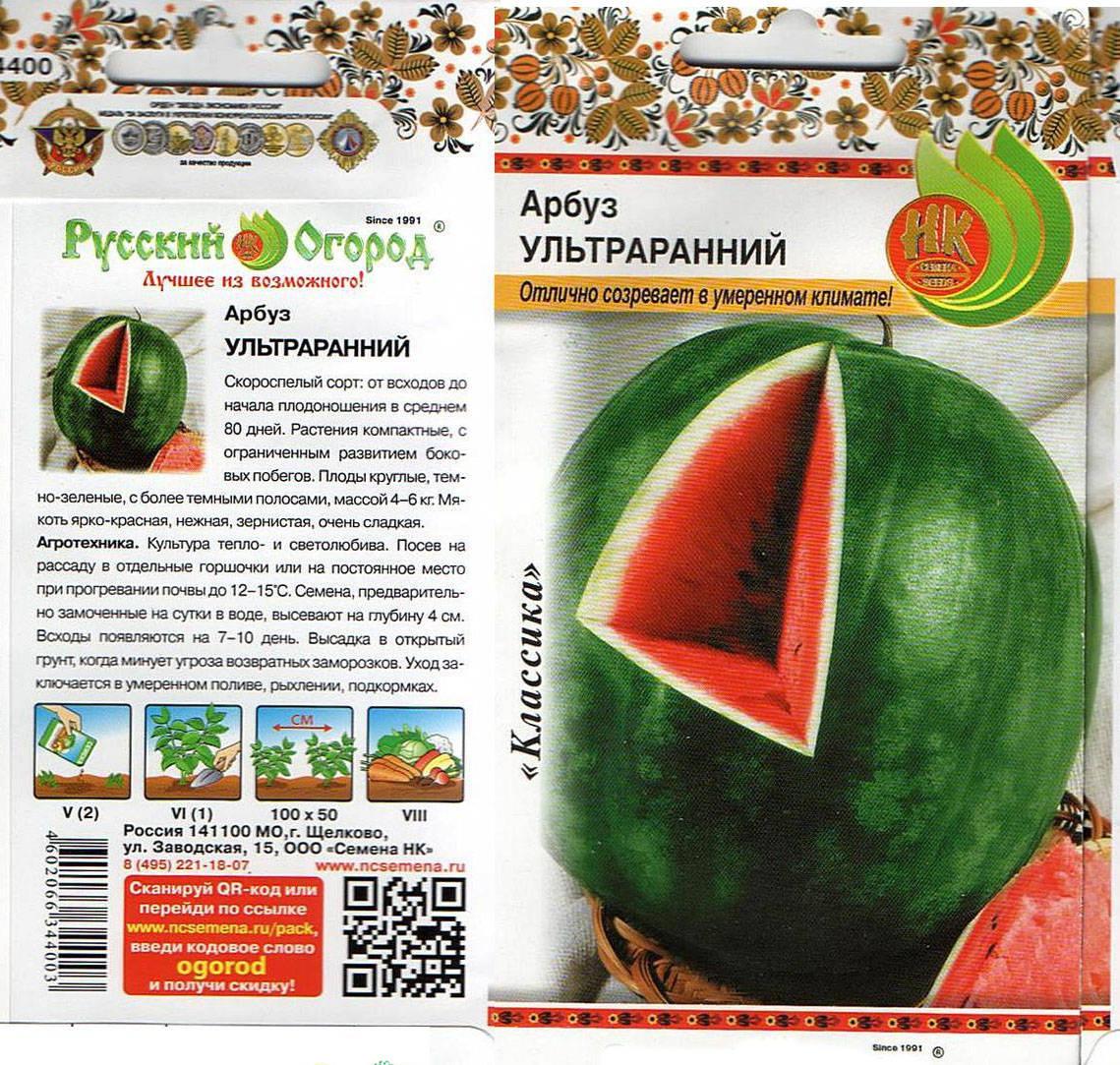 Описание арбуза сорта огонек, его выращивание в открытом грунте и теплице, сроки созревания