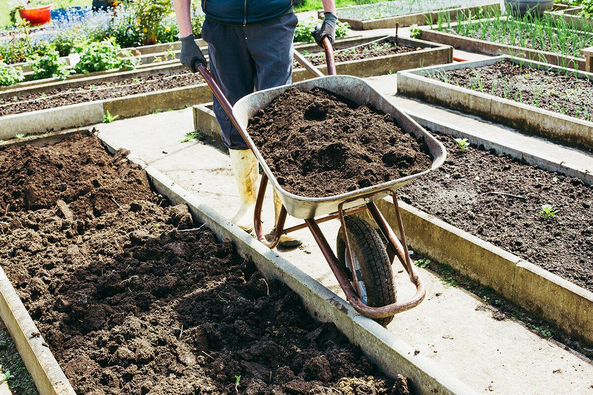 Подготовка почвы в теплице под помидоры весной: как и чем обработать