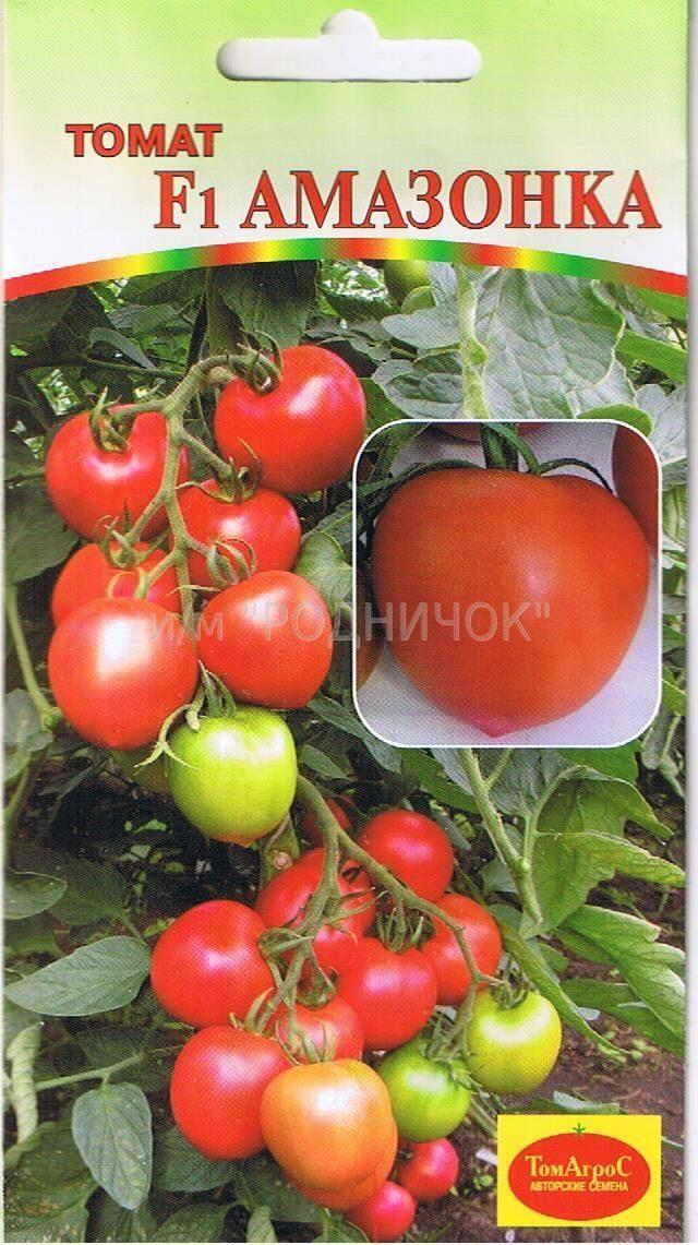 Простые в уходе помидоры с экзотическим цветом — томат тасманский шоколад: описание сорта