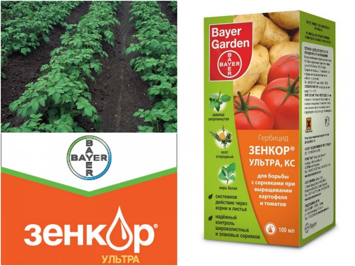 Инструкция по применению средства Зенкор Ультра от сорняков для картофеля