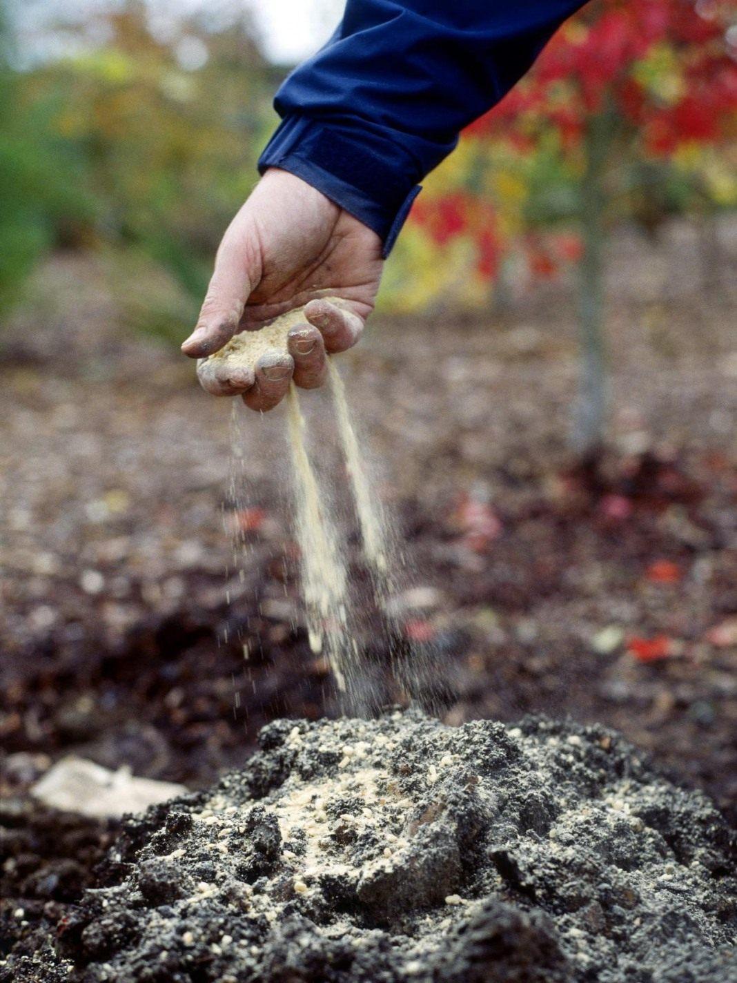 Чем удобрять землю осенью, если нет навоза: органические и минеральные удобрения, сидераты