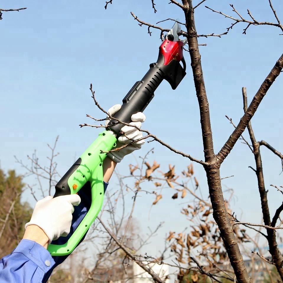 Сучкорез: особенности садового сучкореза с храповым механизмом для обрезки деревьев. характеристики ручных моделей. сравнение инструментов alligator, raco, wolf-garten и других