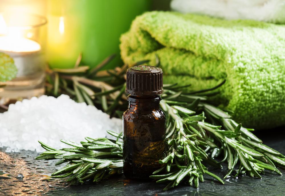 Розмарин: лечебные свойства и противопоказания к употреблению
