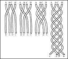 Мастер-класс по плетению косы из лука или чеснока. обсуждение на liveinternet