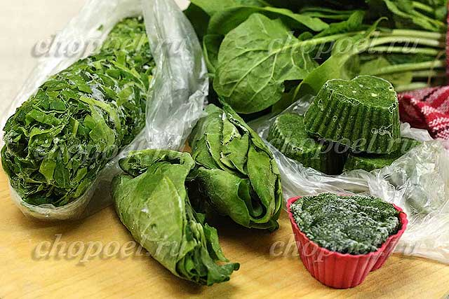 Как заморозить шпинат на зиму в домашних условиях: 6 способов заморозки - сусеки
