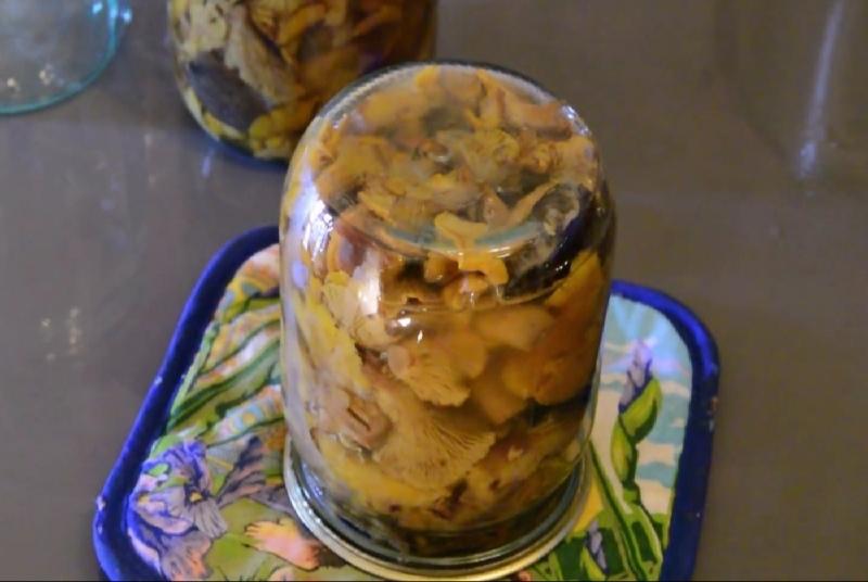 Самые вкусные рецепты маринованных лисичек