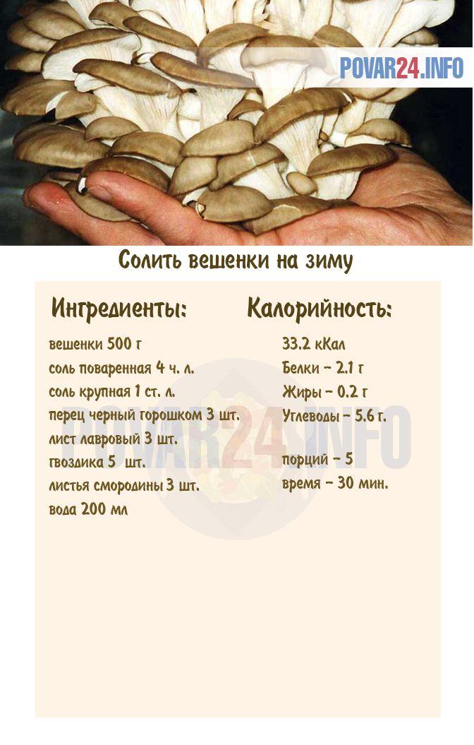 Как мариновать грибы вешенки в домашних условиях