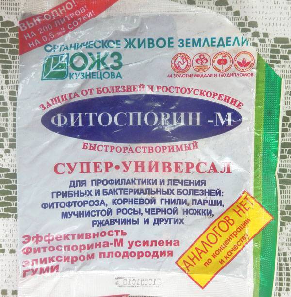 Особенности применение фитоспорина для огурцов