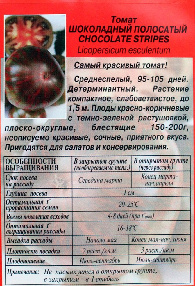 Описание необычного сорта томата Полосатый шоколад и выращивание рассадным методом