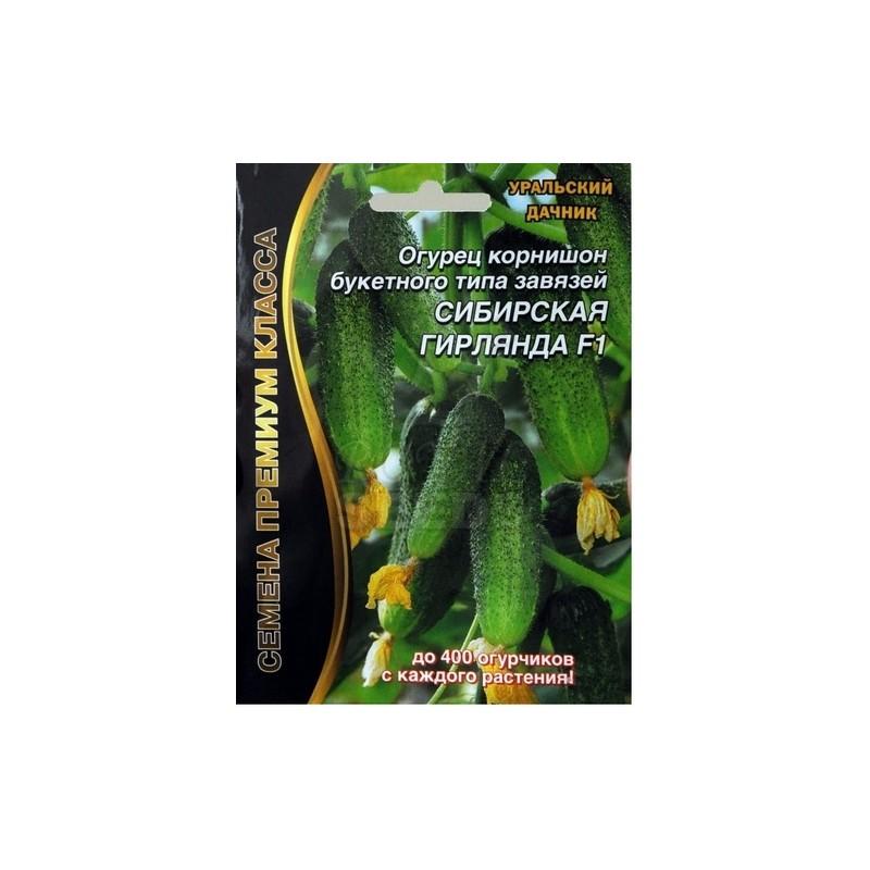 Новые сорта огурцов на 2021 год сибирской селекции: самые урожайные наименования, особенности селекции и советы по выращиванию