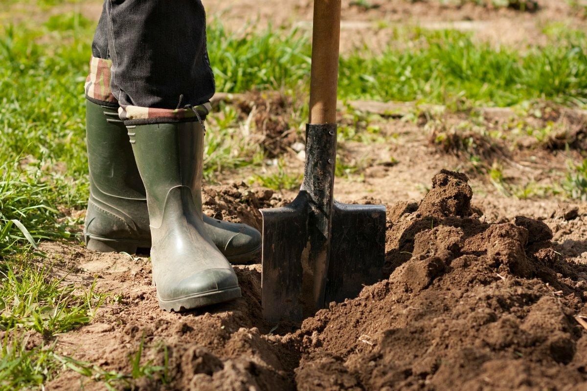 Копать или некопать? зачем копать землю осенью | good-tips.pro