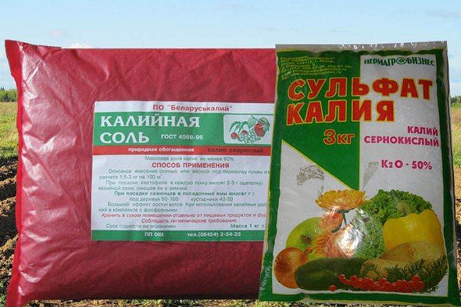 Удобрение сульфат калия: инструкция по применению и состав, применяем на огороде летом, весной и осенью, гост. что это такое?