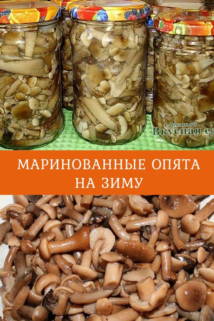 Маринованные опята – очень вкусные, ребята! как мариновать опята в домашних условиях на зиму и по-быстренькому - автор екатерина данилова - журнал женское мнение
