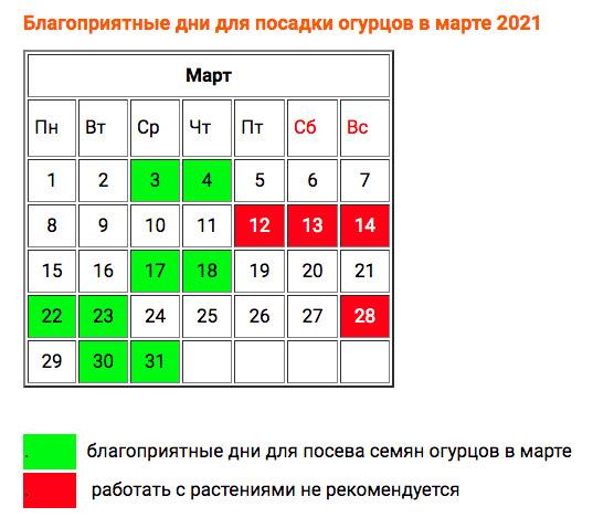 Самые благоприятные дни для посадки огурцов рассадой и в грунт в 2021 году