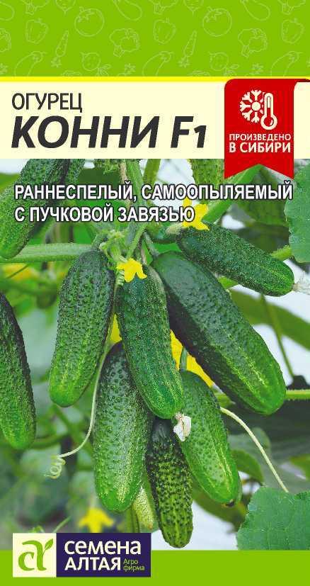 Сорт огурцов — гибрид конни f1: описание сорта, фото, отзывы
