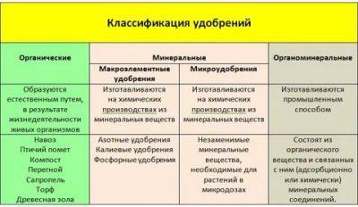 Разновидности калийных удобрений и их применение