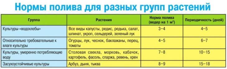Как правильно поливать: сколько, когда, как - дачные советы.ру