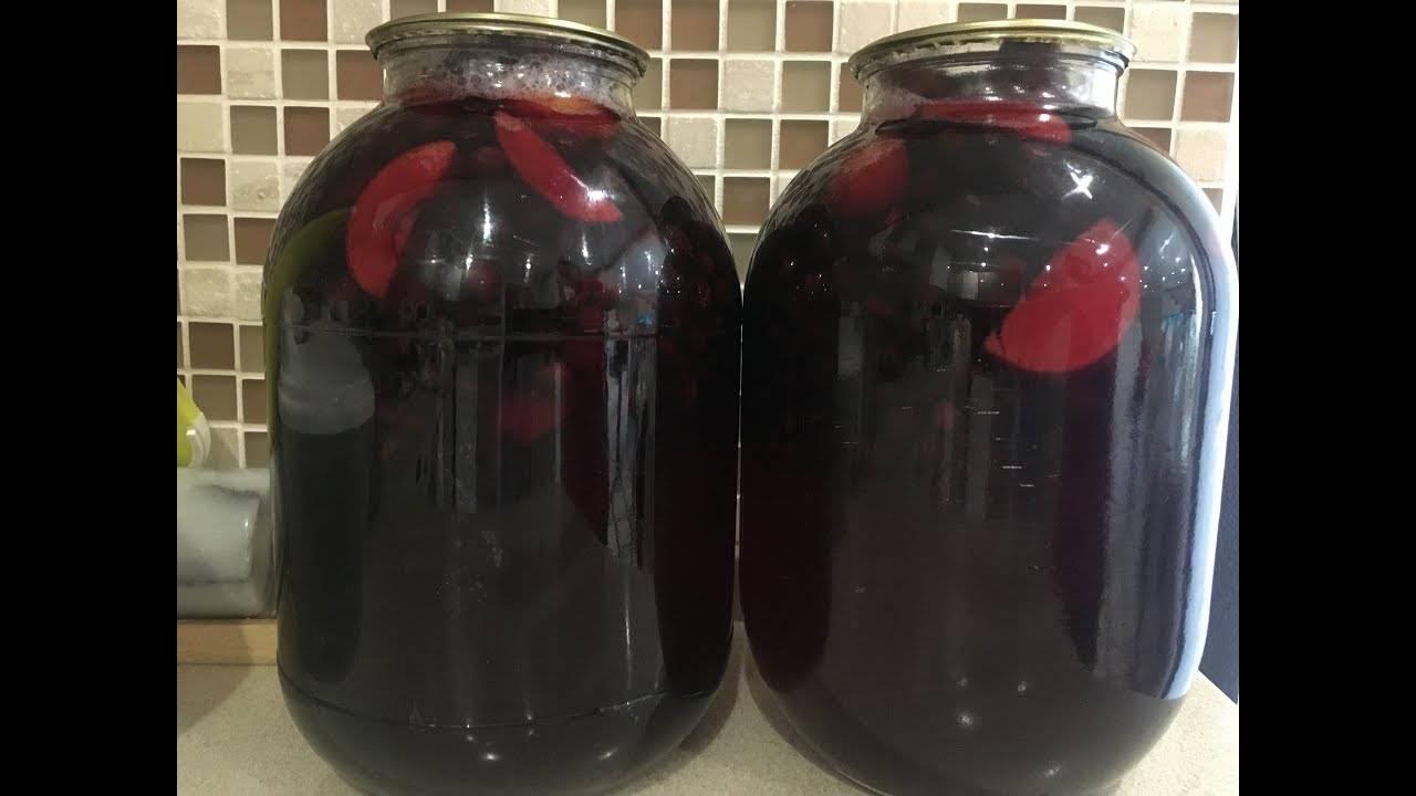 Компот из черноплодной рябины: 8 рецептов