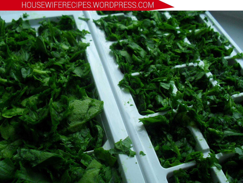 Как заморозить шпинат на зиму в домашних условиях: 6 способов заморозки » сусеки