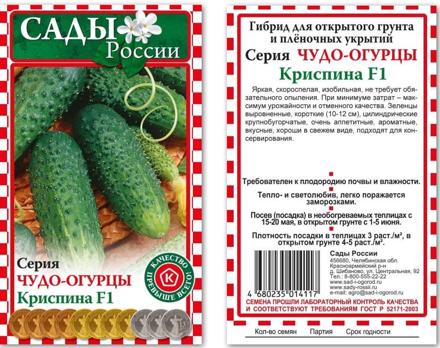 Огурец криспина f1: описание сорта, отзывы, выращивание в открытом грунте, урожайность