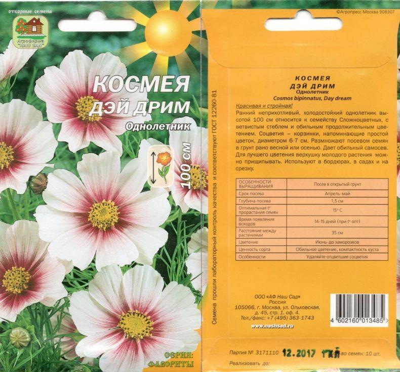 Космея (59 фото): посадка и уход за цветком в открытом грунте, выращивание космеи из семян на клумбе, описание, дваждыперистая, серно-жёлтая и другие