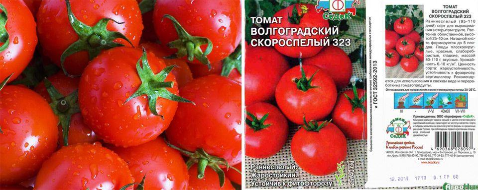 """Томат """"волгоградский скороспелый 323"""": особенности, описание и фото сорта русский фермер"""