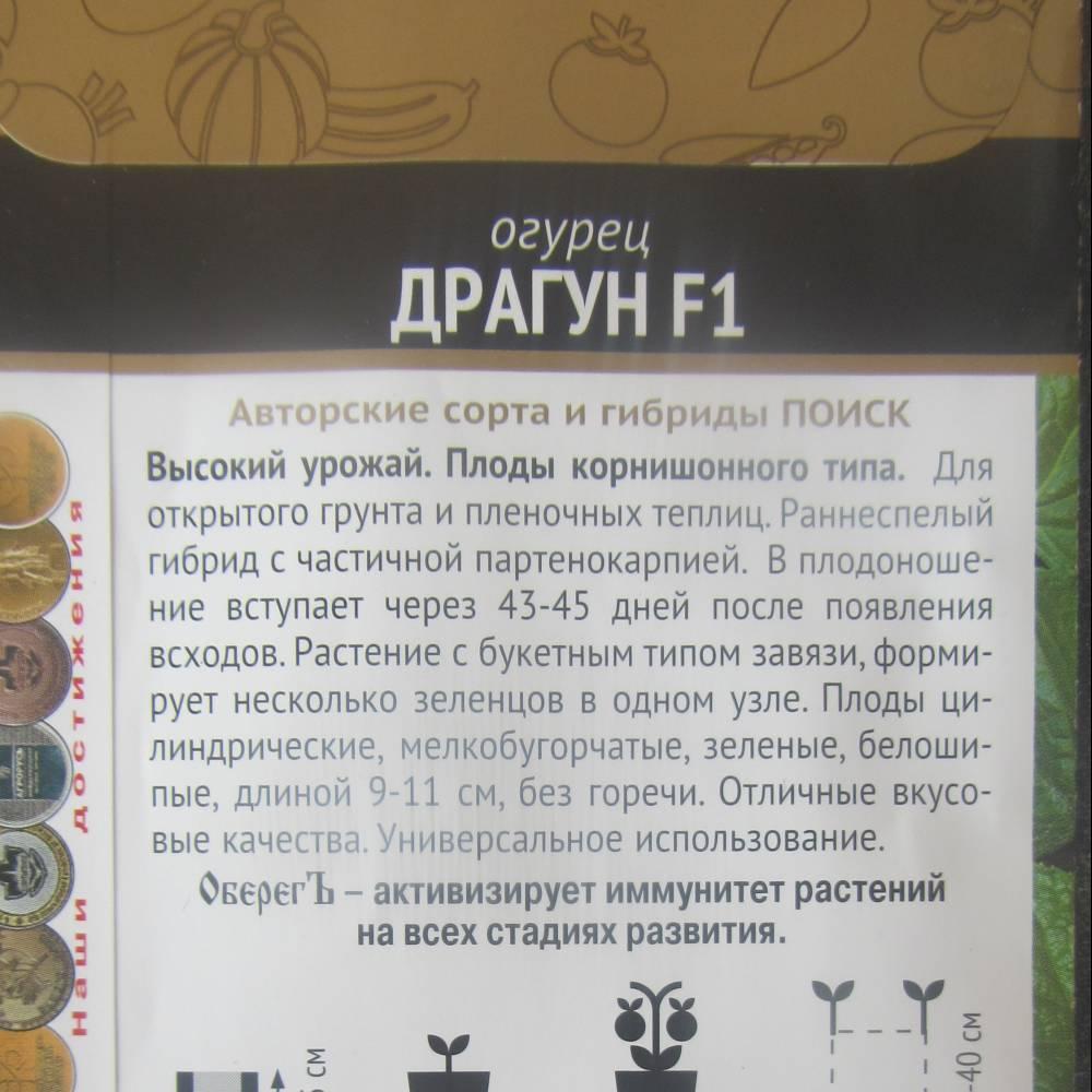 Огурец изящный: отзывы, описание сорта, фото