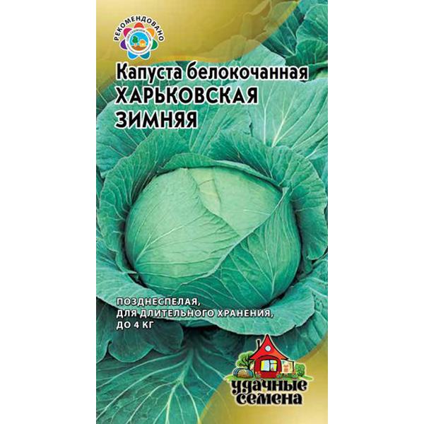 Капуста харьковская зимняя отзывы о позднем сорте, его характеристика и описание, особенности выращивания, фото