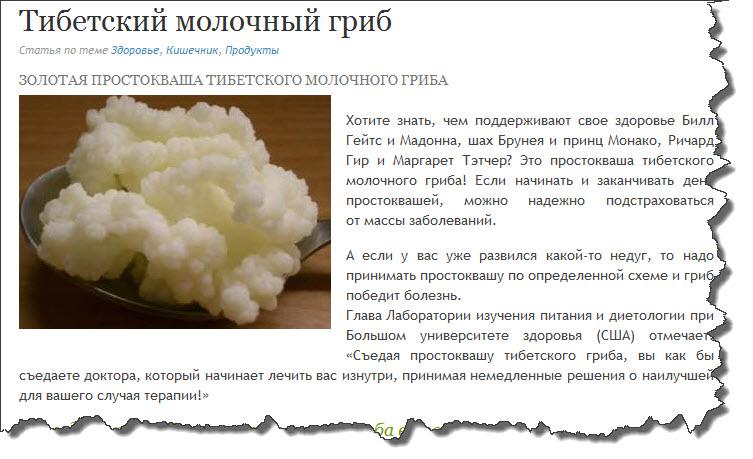 Молочный гриб: инструкция по уходу, приготовлению и применению кефира