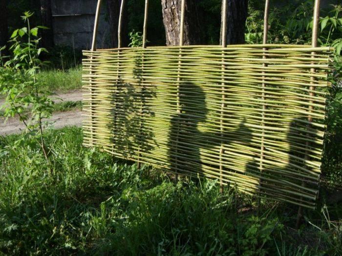 Плетня (67 фото): как сделать ограждение своими руками на даче, декоративная плетеная изгородь в ландшафтном дизайне