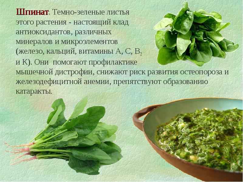 Чем полезен базилик? польза пряной травы для женщин и мужчин.. о пользе и вреде базилика | дачная жизнь