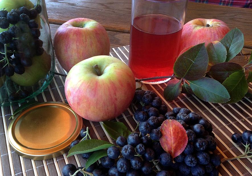 Варенье из яблок с черноплодной рябиной: рецепты на зиму