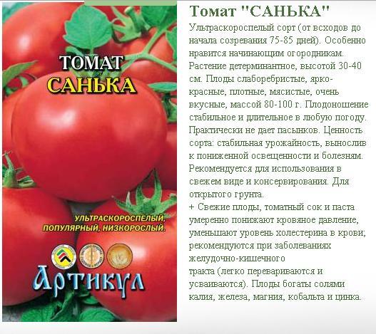 Томат «санька»: описание сорта, фото и отзывы