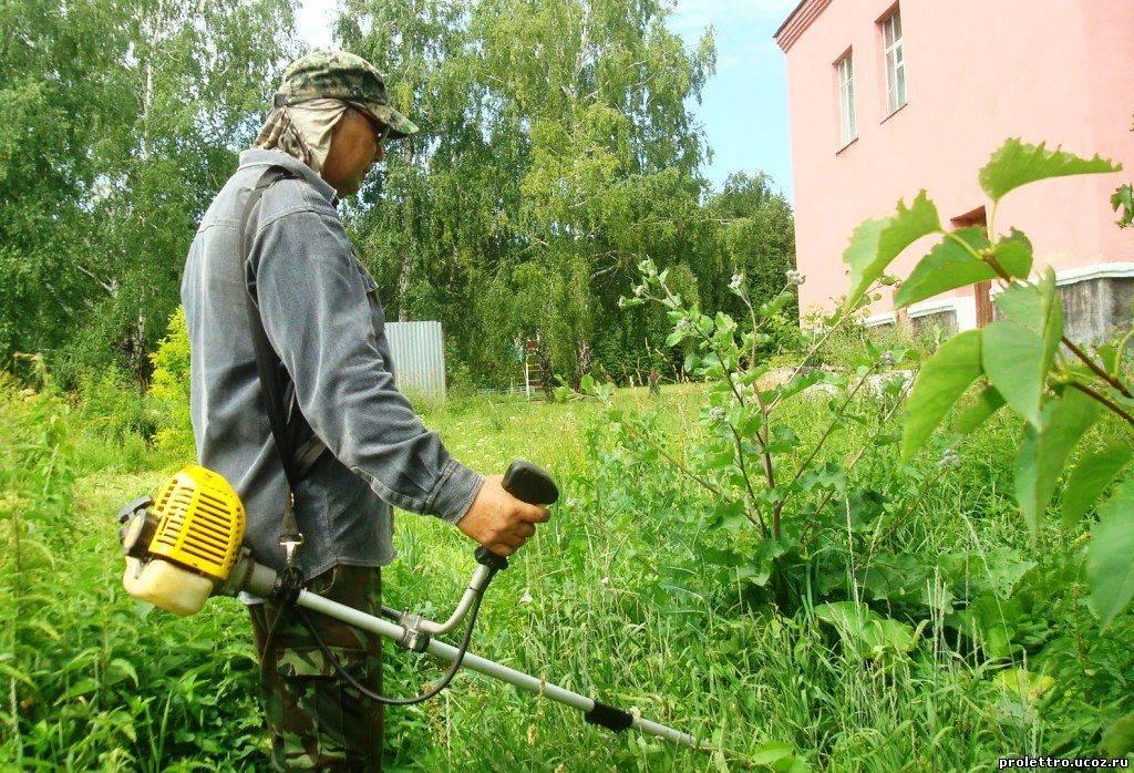 Как избавиться от сорняков: химические, механические, биологические и народные методы борьбы с нахлебниками на своем участке