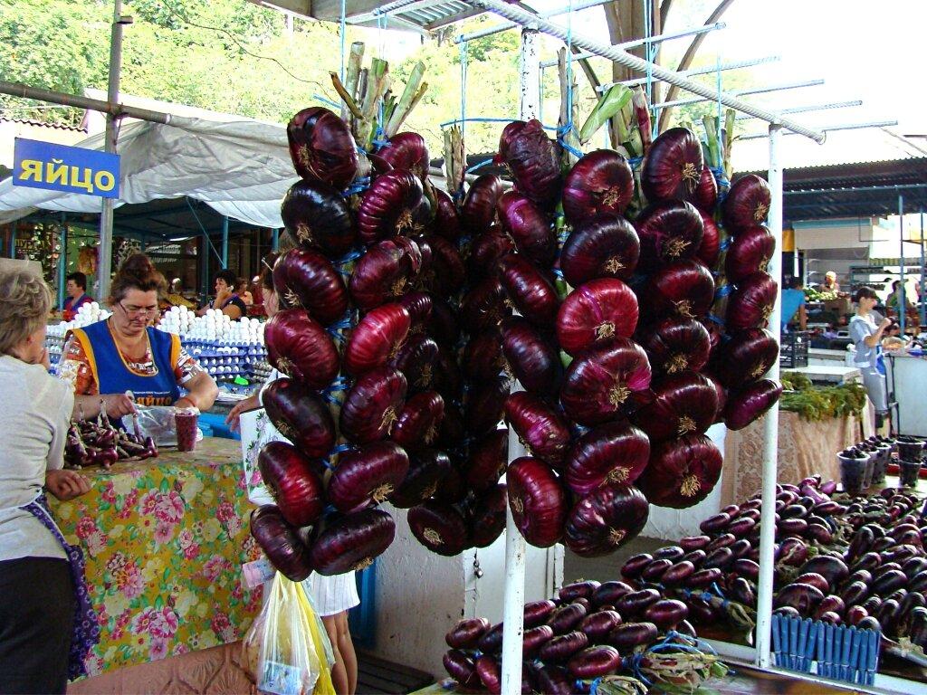 Ялтинский лук (крымский красный): фото, полезные свойства, выращивание в средней полосе