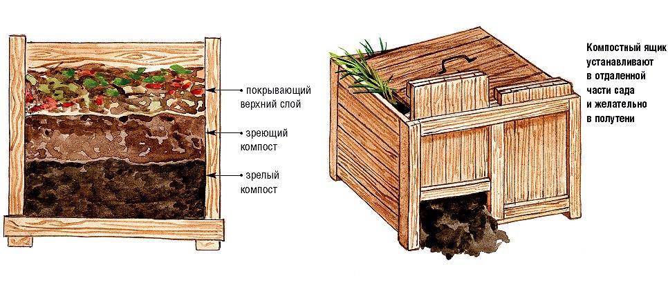 Перепревший навоз: как сделать перегной из помета или экскрементов крс, сколько времени это займет, как отличить его от свежего материала и использовать в саду