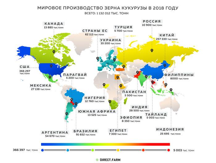 Основные районы выращивания кукурузы в россии, роль культуры в сельском хозяйстве