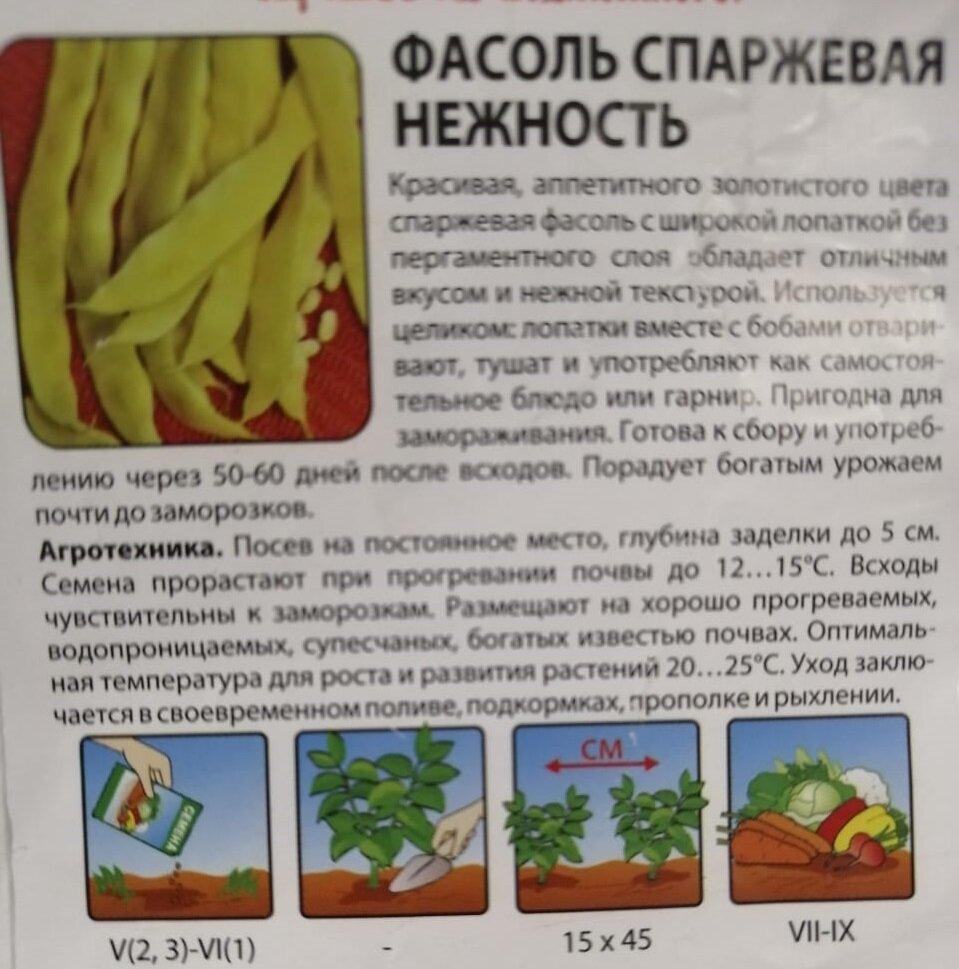 Виды и сорта фасоли: их название, описание и фото