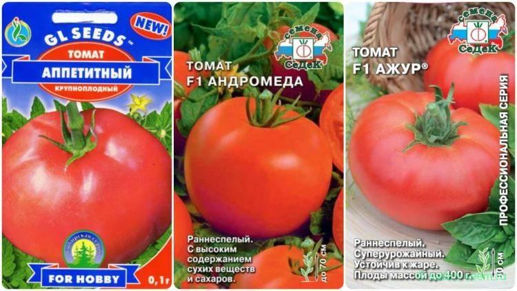 Сорт боец – неприхотливый томат сибирской селекции — описание, характеристики, отзывы садоводов
