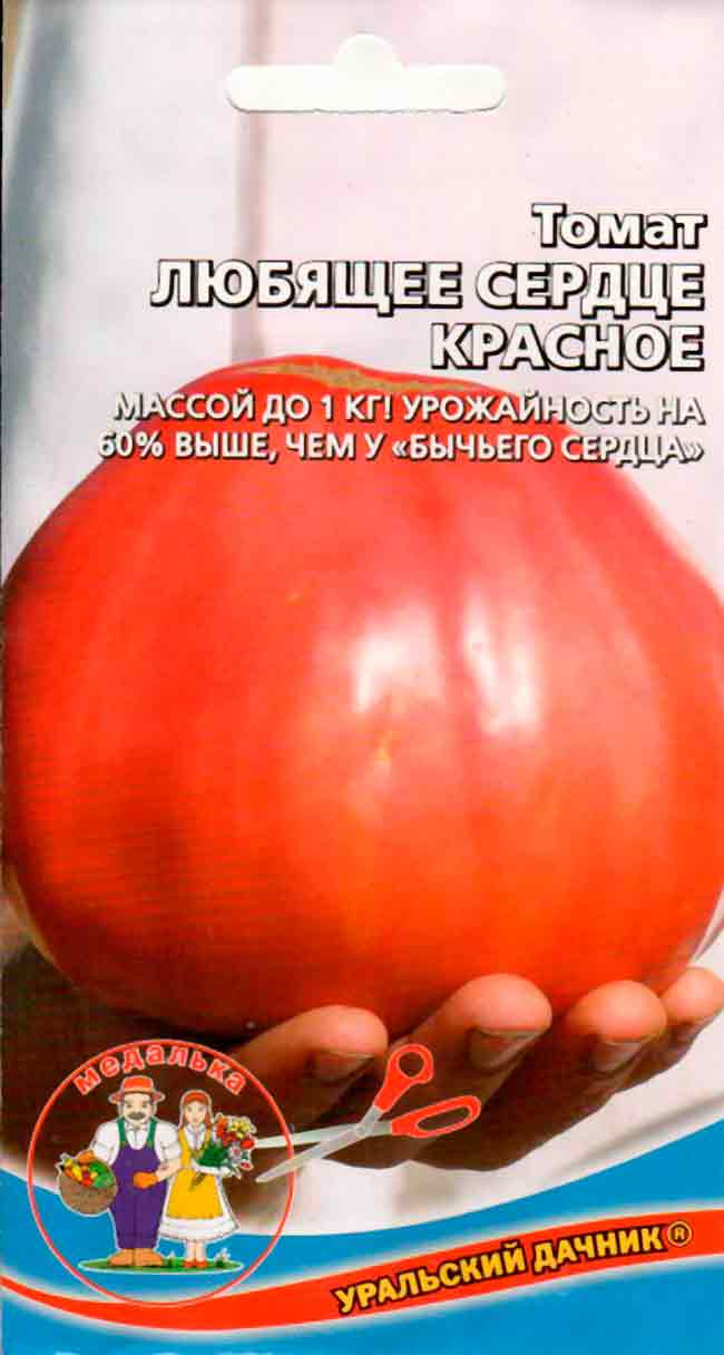 «бычье сердце красное» - томат для выращивания в южных регионах россии: описание и особенности выращивания русский фермер