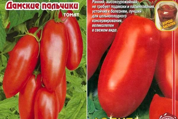 Описание сорта томата сахарные пальчики, его характеристика и урожайность – дачные дела