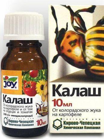 Средства от колорадского жука: виды, названия, особенности