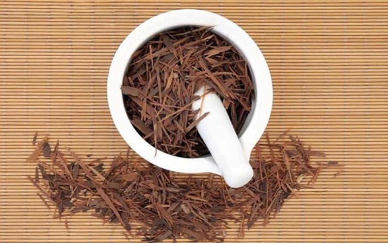 Кора муравьиного дерева – состав, польза, вред и способы применения